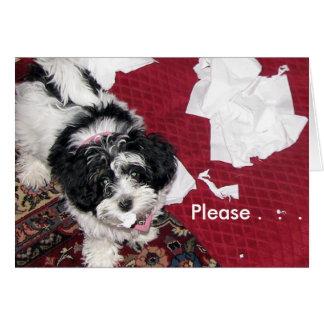 Get Well Puppy  . Card