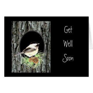 Get Well, Scripture, Peter 5:7,Chickadee, Nature Card