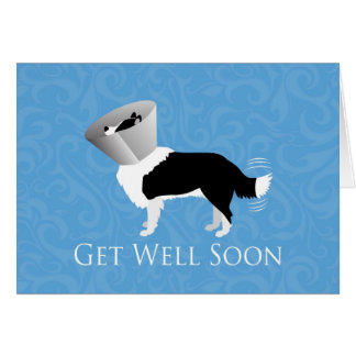 Get Well Soon - Border Collie Male Card