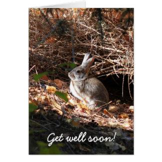 Get Well Soon Bunny Rabbit Greeting Card