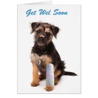 Get well soon card Border Terrier dog