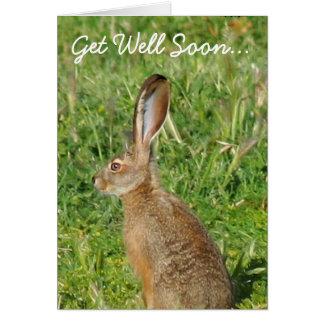 Get Well Soon Jack Rabbit Greeting Card