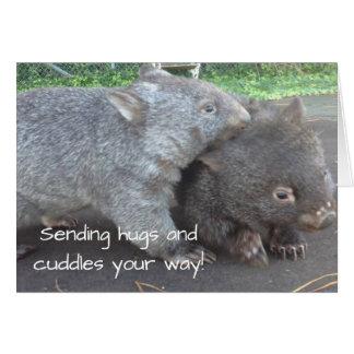 Get well soon, sympathy, cuddly wombat animals car card