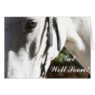 Get Well Soon White Horse Greeting Card