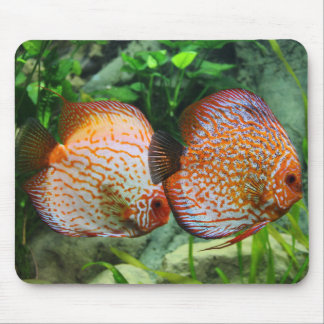 """Get your """"Discus On"""" Mouse Pad"""