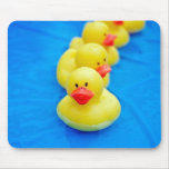 Get Your Ducks In A Row Mouse Pad