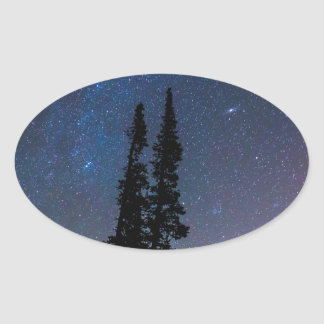 Getting Lost In A Night Sky Oval Sticker