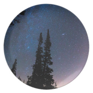 Getting Lost In A Night Sky Plate