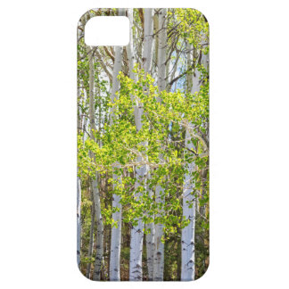 Getting Lost In the Wilderness iPhone 5 Case