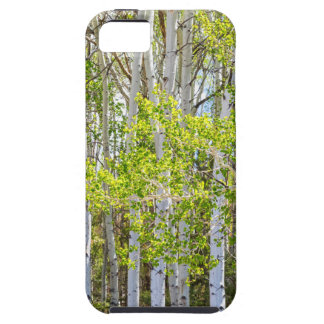 Getting Lost In the Wilderness iPhone 5 Cover