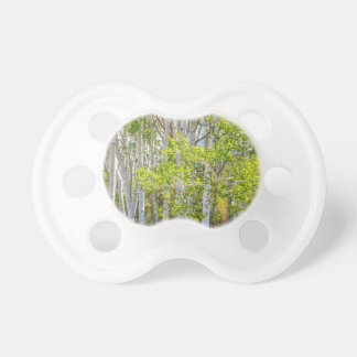 Getting Lost In the Wilderness Pacifier
