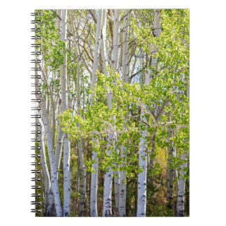 Getting Lost In the Wilderness Spiral Note Book
