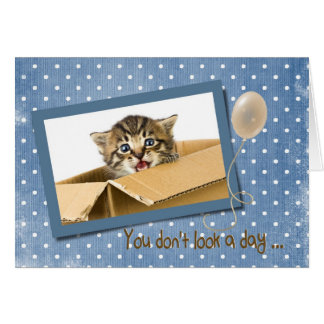 getting older birthday with cat in box card
