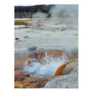 Geysers Steam Boiling Yellowstone Postcard