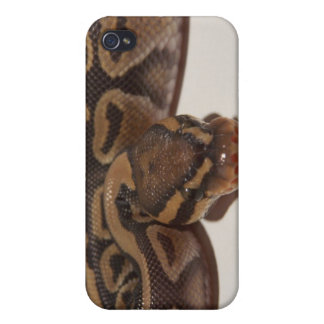 Ghost Ball Python Iphone Case 4G Cover For iPhone 4