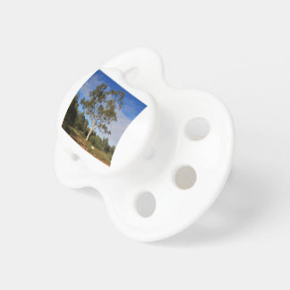 Ghost gum tree, Outback Australia Pacifier