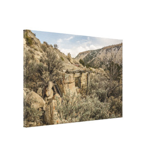 Ghost Towns; Building; Peerless, Utah Canvas Print