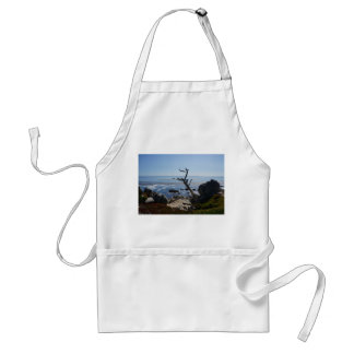 Ghost Tree – Scenic 17 Mile Drive Apron
