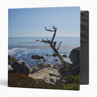 Ghost Tree – Scenic 17 Mile Drive Binder