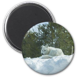Ghost Wolf 2 Inch Round Magnet
