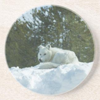 Ghost Wolf Beverage Coasters