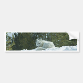 Ghost Wolf Bumper Sticker