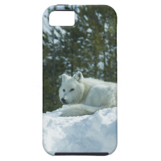 Ghost Wolf Case For The iPhone 5