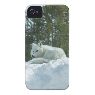 Ghost Wolf iPhone 4 Case