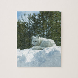 Ghost Wolf Jigsaw Puzzle
