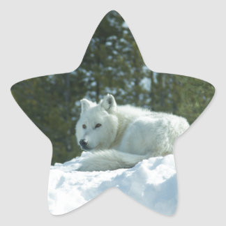 Ghost Wolf Star Sticker