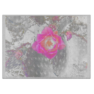 Ghosted pink cactus flower boards