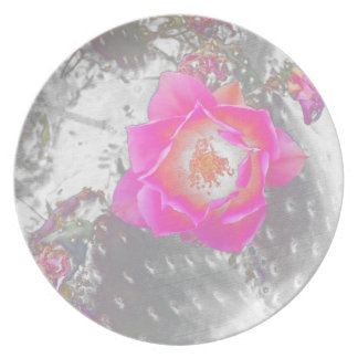 Ghosted pink cactus flower plate