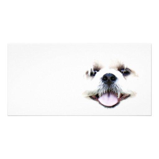 Ghostly dog customized photo card