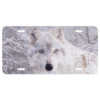Ghostly wolf in the snow license plate