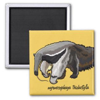 giant anteater magnet