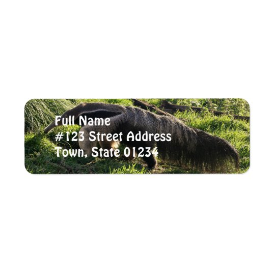 Giant Anteater Return Address Label