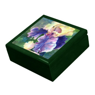 Giant Bearded Iris Gift Box