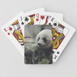 Giant Chinese Panda Bear Poker Deck