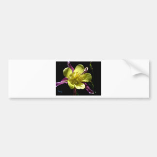 Giant Columbine Bumper Sticker