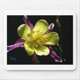 Giant Columbine Mouse Pad