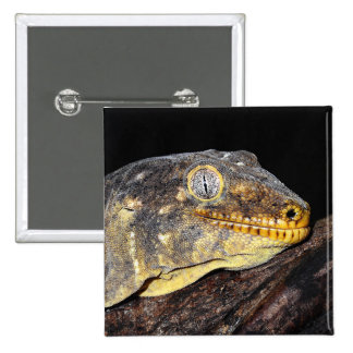 Giant geckos 2 inch square button