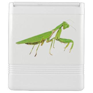 Giant Green Praying Mantis 24 Can Igloo Cooler