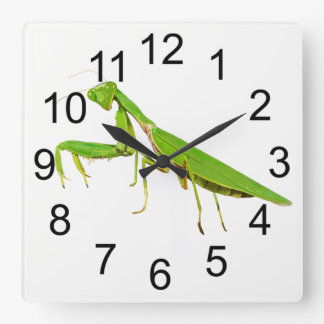 Giant Green Praying Mantis Wall Clock