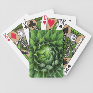 Giant Lobelia | Mount Kenya National Park, Kenya Bicycle Playing Cards
