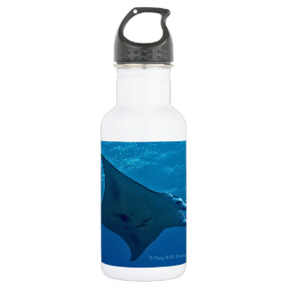 Giant Manta Ray 532 Ml Water Bottle