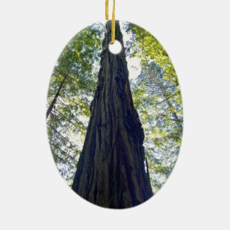 Giant Neverending Redwood Tree Ceramic Oval Ornament