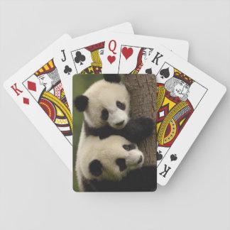 Giant panda babies (Ailuropoda melanoleuca) 2 Poker Deck