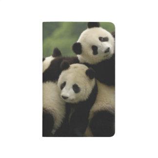 Giant panda babies Ailuropoda melanoleuca) 4 Journal