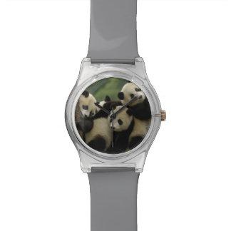 Giant panda babies Ailuropoda melanoleuca) 4 Wrist Watch