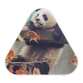 Giant panda baby over the tree speaker